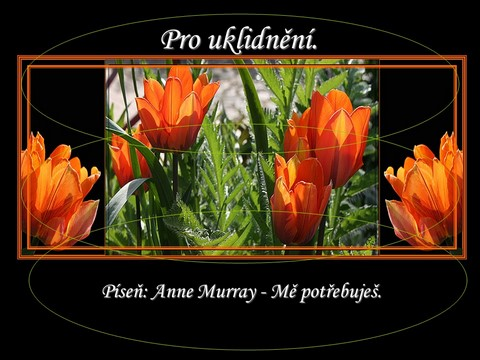 Prezentace Anne Murray