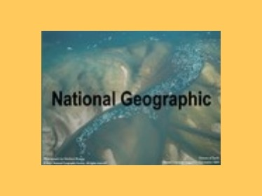 Prezentace National geographic